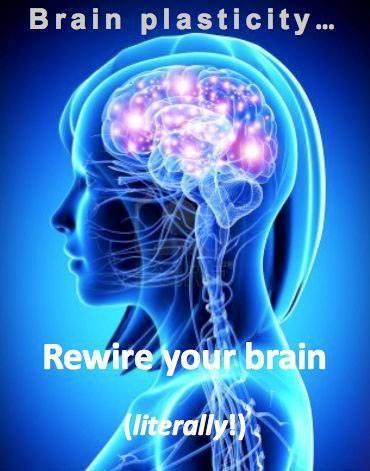 Image courtesy: iveronicawalsh.wordpress.com