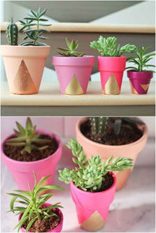 painted-plant-pots