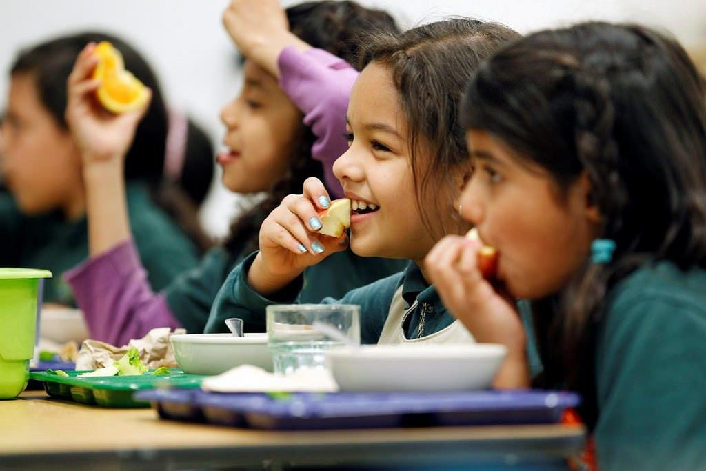 Top Brain Foods for Kids Development, Bain Foods to Boost Focus and Memory
