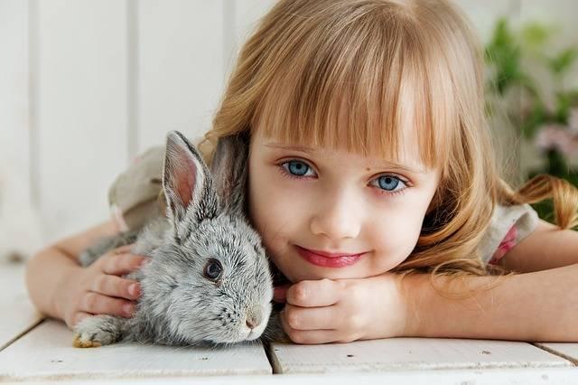 Girl with Pet Animal