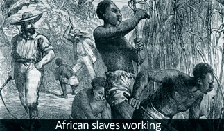 African Slaves in USA