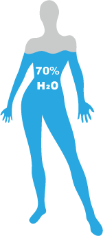 Water Level in Human Body