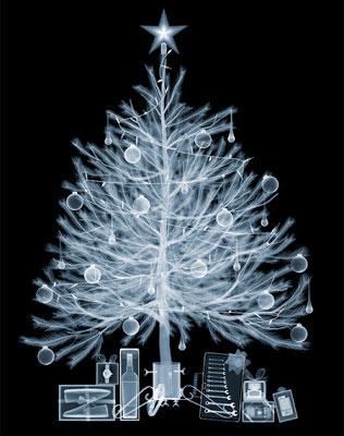 X-ray Christmas tree!