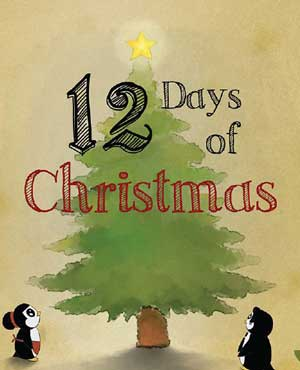 eBook - 12 Days of Christmas