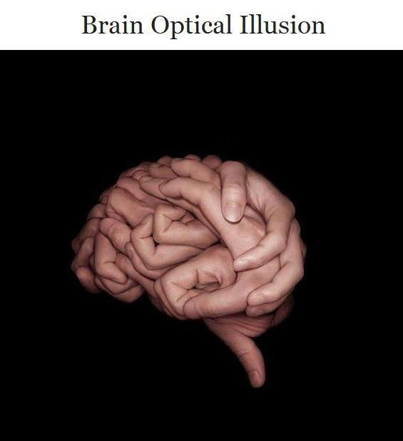 Brain Optical Illusion Image