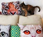 Pillows with Cat Faces