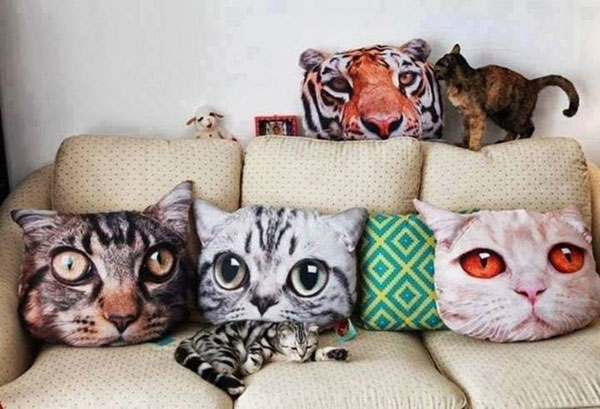 Funny Pillows with Cat Faces