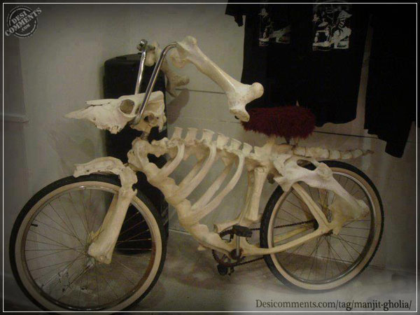 Funny visual - Skelten Cycle