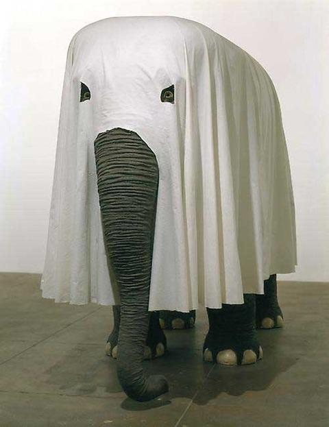 Funny Elephant Dress