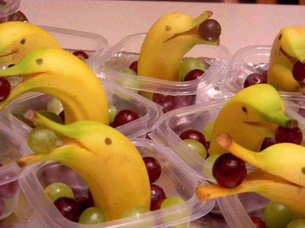 Fruits Fun