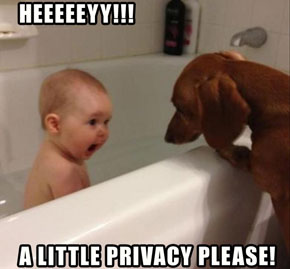 funny-kids-taking-a-bath-with-dog