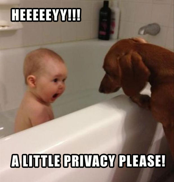 Funny Pictures For Bathroom: Funny Kid Taking Bath