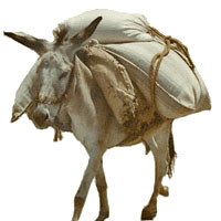 Short Stories - A Merchant and his Donkey
